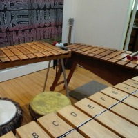 One Day Marimba Fun