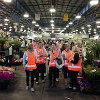 Sydney Flower Market Tour & Breakfast