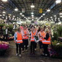 Sydney Flower Market Tour & Breakfast
