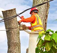 Working Under Powerlines - Refresher