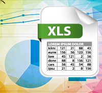 Business - Microsoft Excel 2013 - Introduction