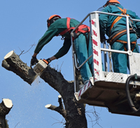 Work Safely at heights - RIIWHS204D