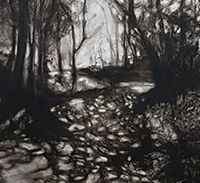 Exploring Charcoal Techniques in Landscape Drawing