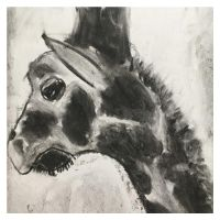 Charcoal Giraffe 4to7