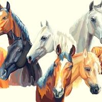 Junior Masterclass 9+yrs  |  Horse Crazy