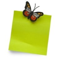 Butterfly & Bugs Magnets - 4-7yrs