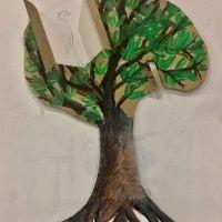 Mangrove Mania - 8+ yrs