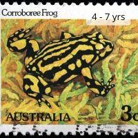 Corroboree Frog - 4-7yrs