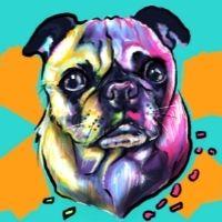 High School Workshop - Pop Art Pets