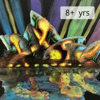 Vivid 8+ years