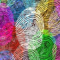 Harmony & Diversity - 8+yrs