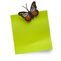 Butterfly & Bugs Magnets - 8+yrs