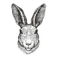 Fuzzy Bunnies Portrait 4-10 yrs