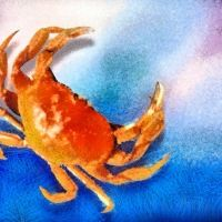 Jnr Masterclass - Red Crabs Acrylic Painting (9+yr olds)