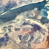 Abstract Watercolour Workshop with Sheila Posner- Click here for booking page