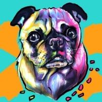 Bubbles & Brush - Its a Pugs Life Click here for booking page