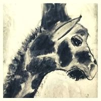 Charcoal Giraffe 8plus