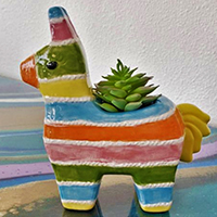 Pot Plants: Portraits of Pets in Clay with Szilvia Gyorgy - Holiday Workshop