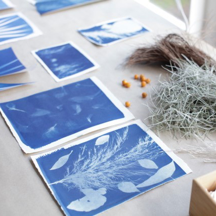 Sun Printing with Eleanor Amiradaki - Holiday Workshop