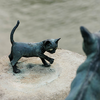 Clay Creations - Cute & Curious Clay Pets with Dominique Smallcombe - Holiday Workshop