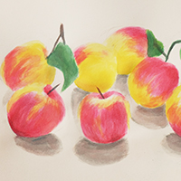Still Life Watercolour Painting with James McCallum - Holiday Workshop