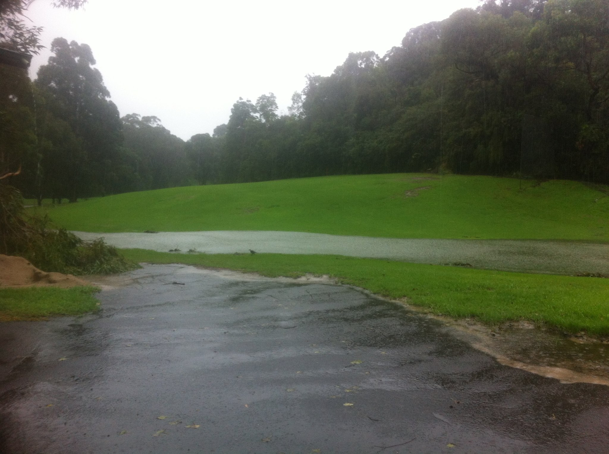 Lane Cove Golf Course new water feature