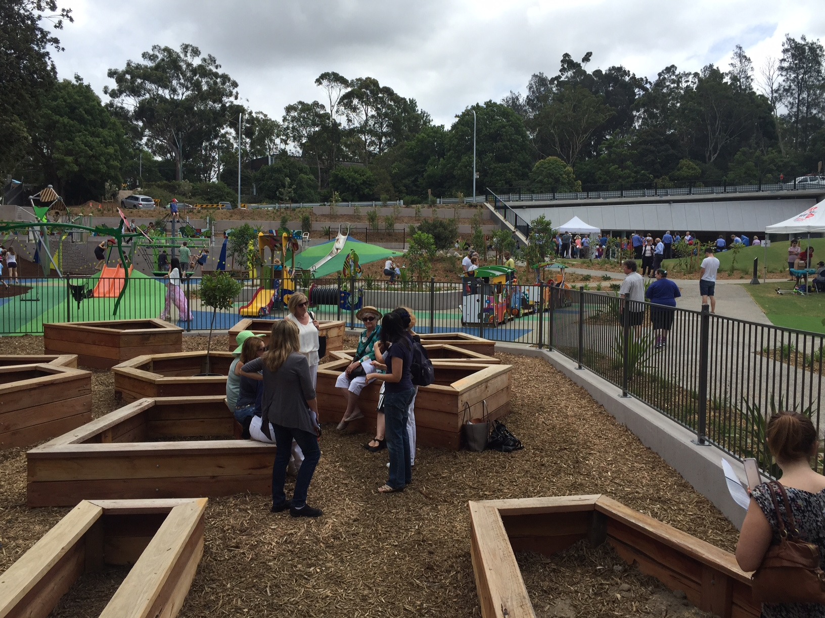 Food Fresh Community Garden Lane Cove