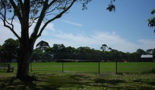 Kingsford Smith Oval Lane C ove