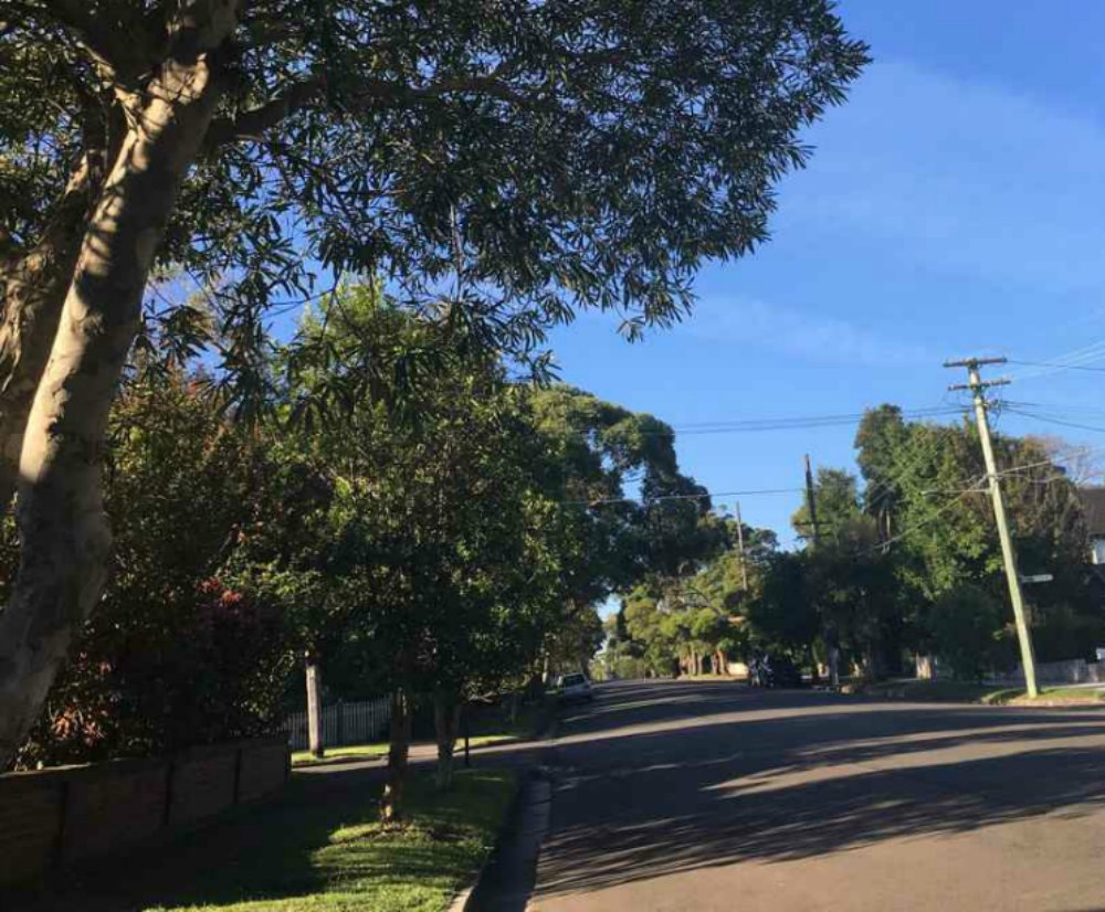 selling a house buying and selling in lane cove