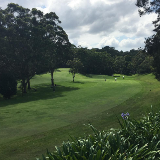 fitness lane cove golf club