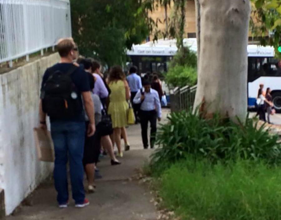 Lane Cove Bus Delays
