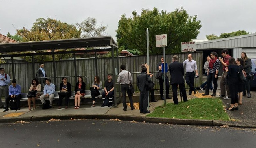 news lane cove Lane Cove residents waiting for the bus