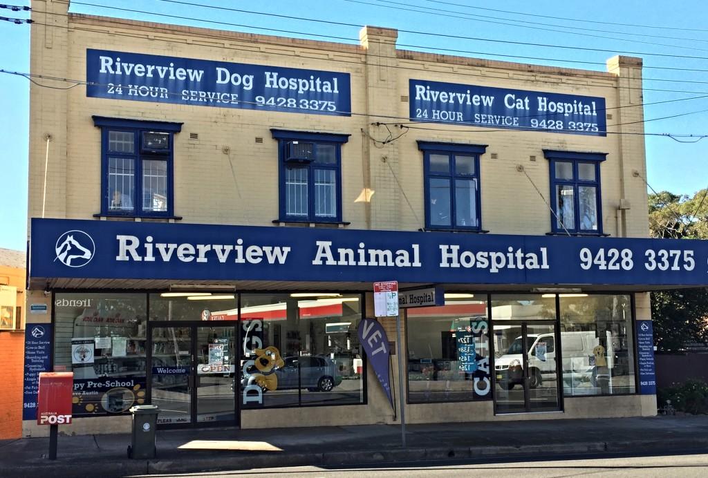 Riverview Animal Hospital
