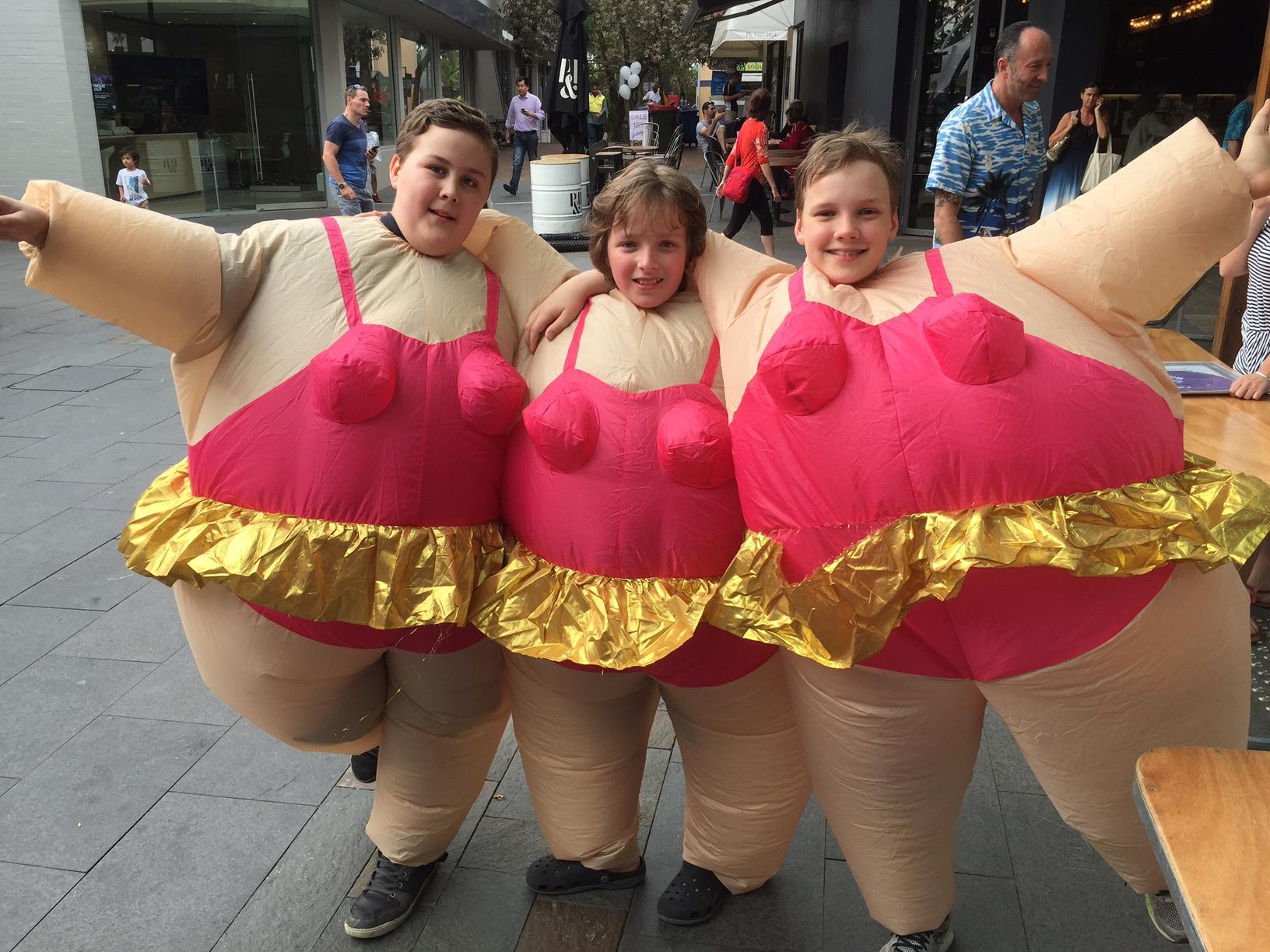 quirky lane cove sumo