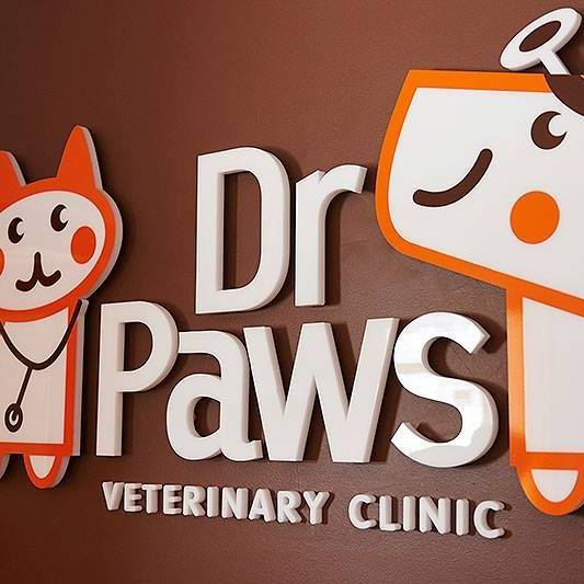 dr paws