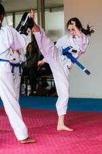 Lane Cove Taekwondo