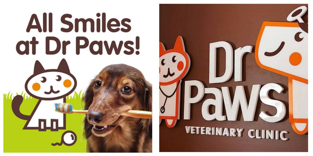 dr paws dental