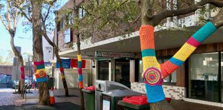 lane cove news yarn bomb