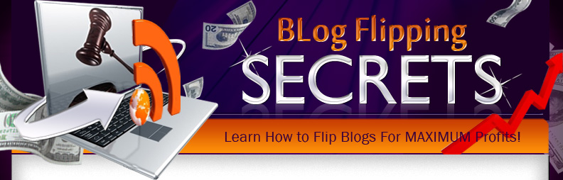 blog flipping guide