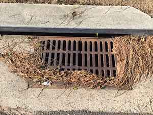 clogged drain needs cleaning