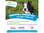 Promotion Discounted Microchipping and Vaccinations - Rockhampton