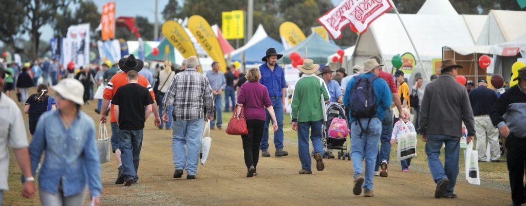 Farm Festival