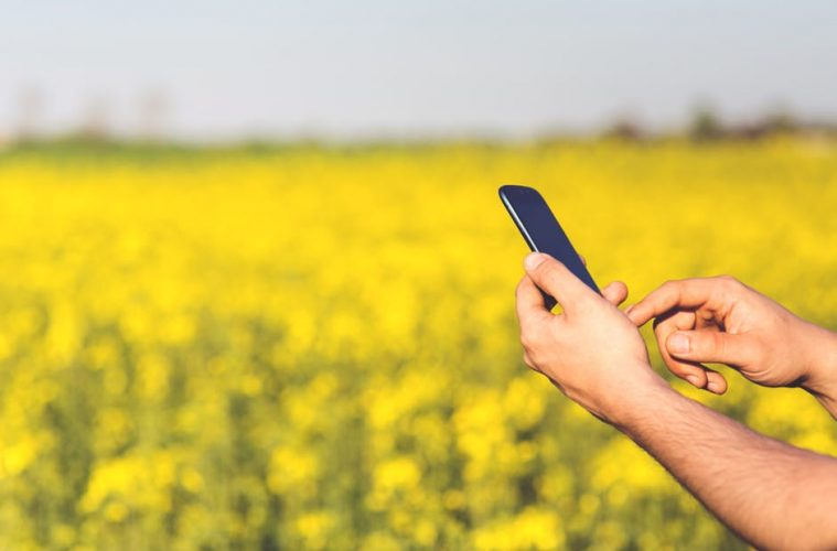 Internet in Farms