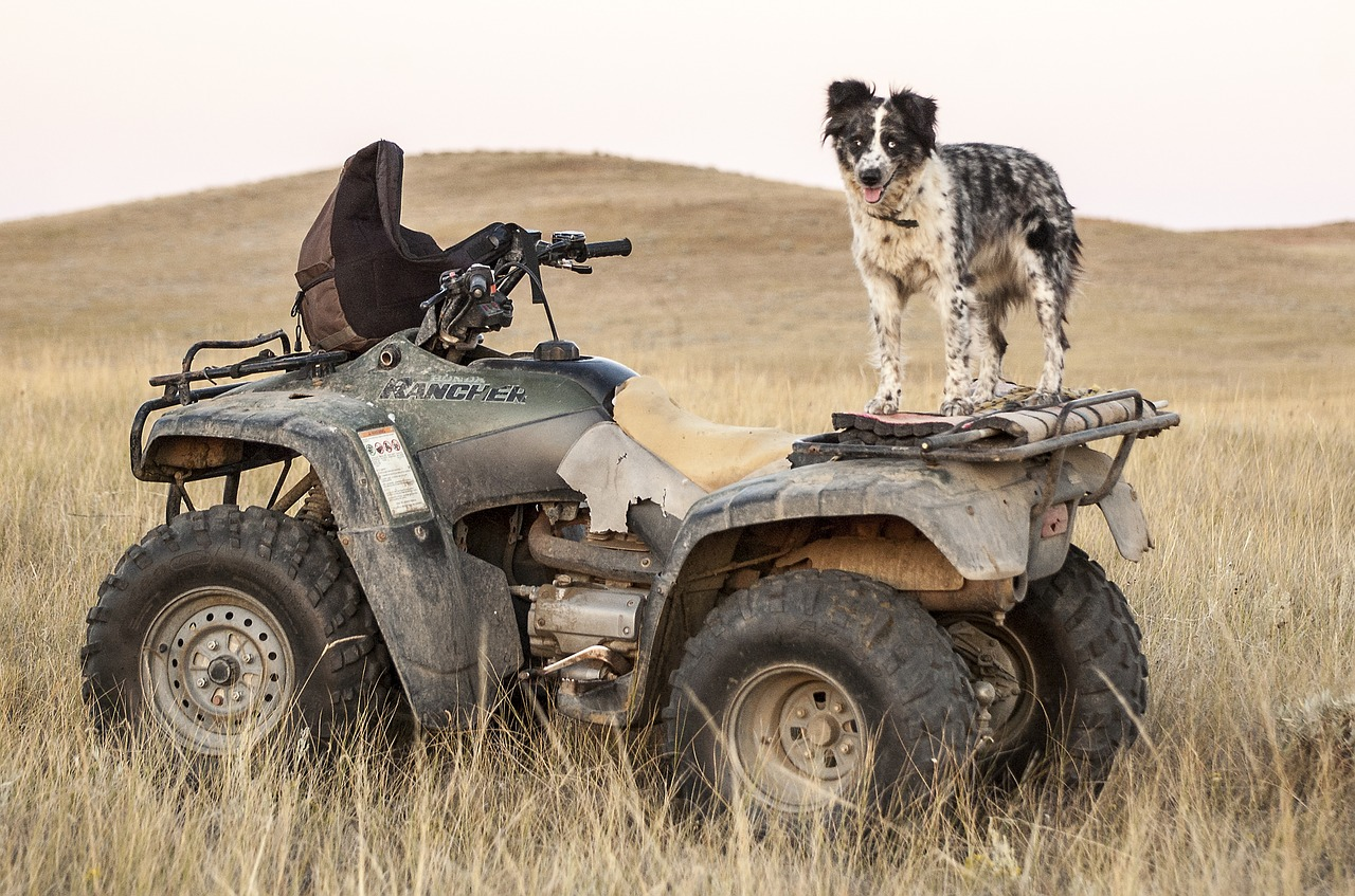 Don't already use an ATV on your farm? Here's why you should...