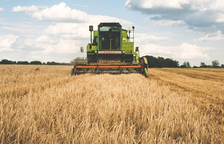 Dry farming land