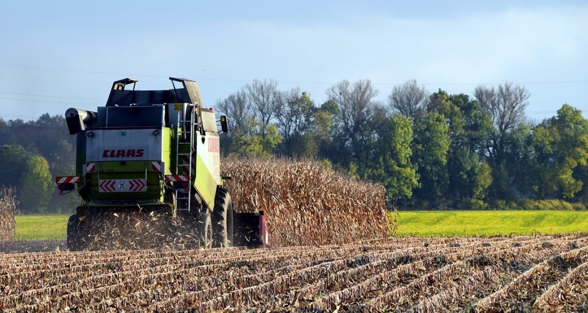 Interseeding: Overcoming the Challenge of Establishing Cover Crops
