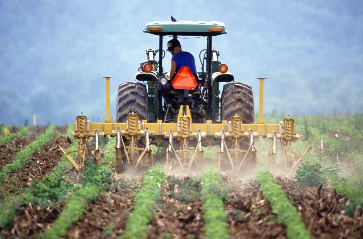 Farming: one of the deadliest occupations in Australia