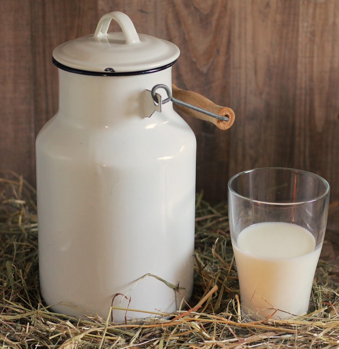 Dairy Farmers Call for a Shake Up of Industry Milk Alternatives