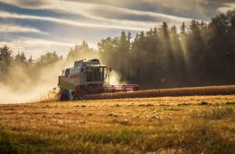 harvester harvesting harvest