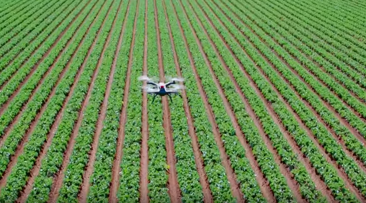 Multispectral Sensors: How Drones are Helping Farmers